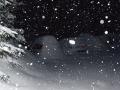 Szczyrk Pokoje gościnne Orlik Zima